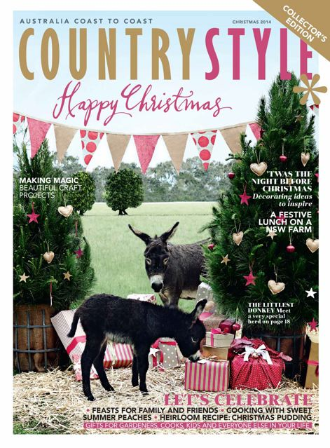 Country_Style_Magazine_Cover_Photo_Of_Micro_donkeys_at_Poplargrove_stud